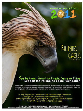 Philippine Eagle Foundation 2011 Calendar and Ads
